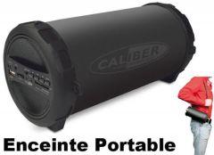 Haut parleurs à poser CALIBER HPG407BT